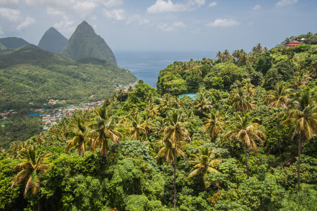 Zip lining across the jungle in St Lucia