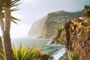 Madeira, portugal. agave-beach-coast-europe