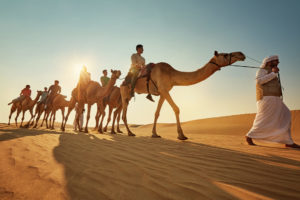 camel riding - Abu Dhabi