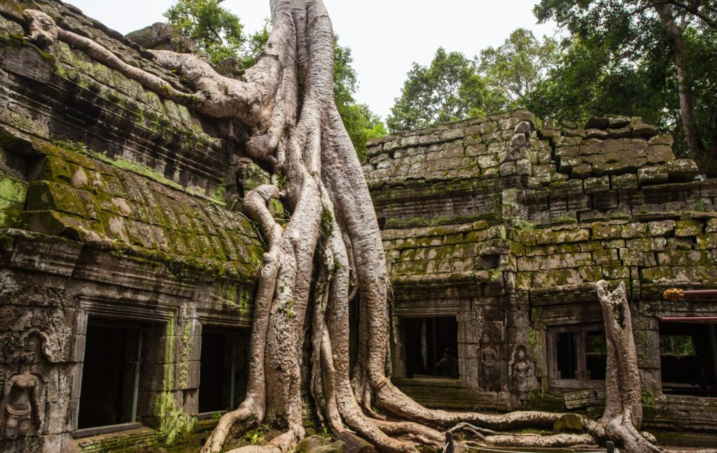 Cambodia - Ankor Wat - Siem Reap